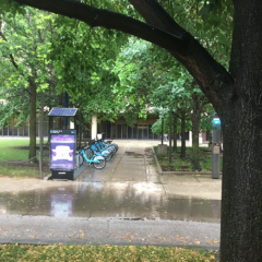 Divvy Station outside of the Daley Library