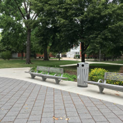 benches sit on top permeable pavers under giant and mature Honey Locust trees.