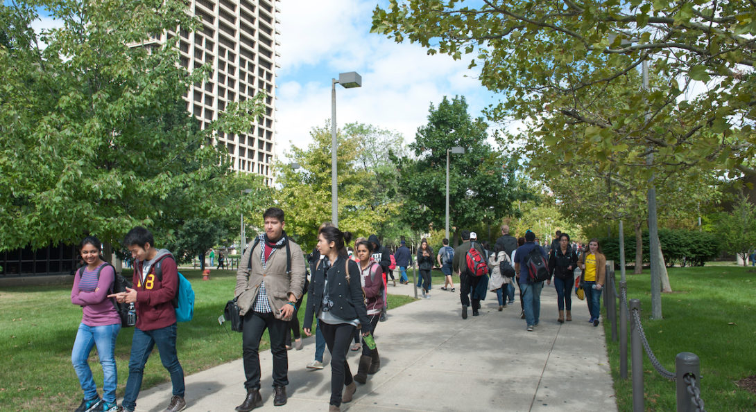 a ethnically diverse group of students walking on east side under a biodiverse tree canopy