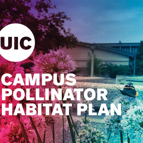 color wash cover of the Campus Pollinator Habitat Plan