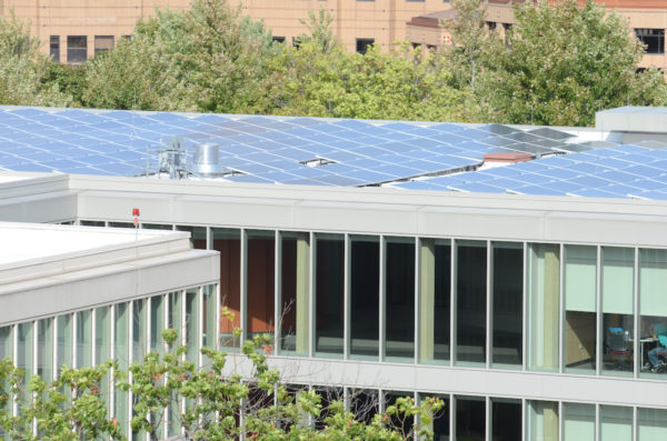 solar panels on the roof of Douglas Hall