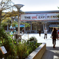 students walking on campus under UIC Experience banner next to a satellite garden Photo: Julie Jaidinger