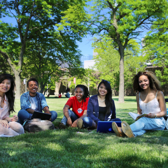 Students sitting on the grass beneath some trees