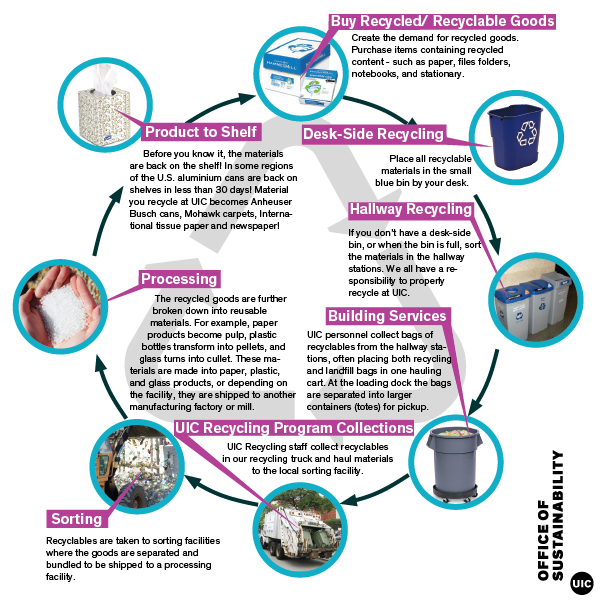 Schematic diagram of the life cycle of recycled goods at UIC that reads clockwise: Buy Recycled/ Recyclable Goods. Create the demand for recycled goods. Purchase items containing recycled content - such as paper, files folders, notebooks, and stationary. Desk-Side Recycling. Place all recyclable materials in the small blue bin by your desk. Hallway Recycling. If you don't have a desk-side bin, or when the bin is full, sort the materials in the hallway stations. We all have a responsibility to properly recycle at UIC. Building Services. UIC personnel collect bags of  recyclables from the hallway stations, often placing both recycling  and landfill bags in one hauling  cart. At the loading dock the bags  are separated into larger  containers (totes) for pickup.   UIC Recycling Program Collections. UIC Recycling staff collect recyclables  in our recycling truck and haul materials  to the local sorting facility. Sorting. Recyclables are taken to sorting facilities where the goods are separated and  bundled to be shipped to a processing facility. Processing. The recycled goods are further      broken down into reusable      materials. For example, paper products become pulp, plastic  bottles transform into pellets, and glass turns into cullet. These materials are made into paper, plastic,  and glass products, or depending on  the facility, they are shipped to another  manufacturing factory or mill. Product to Shelf. Before you know it, the materials  are back on the shelf! In some regions  of the U.S. aluminum cans are back on  shelves in less than 30 days! Material you recycle at UIC becomes Anheuser Busch cans, Mohawk carpets, International tissue paper and newspaper!