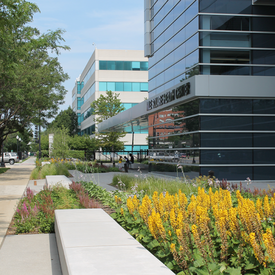 Mile Square's Native Plant Garden