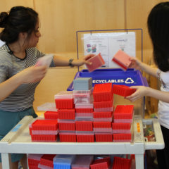researchers placing pipette tip boxes in a recycling bin
