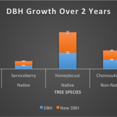 DBH Growth Over 2 Years graph comparing native on non-native tree species