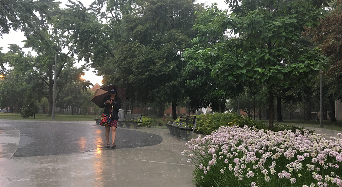 student walking in the rain in the Grove