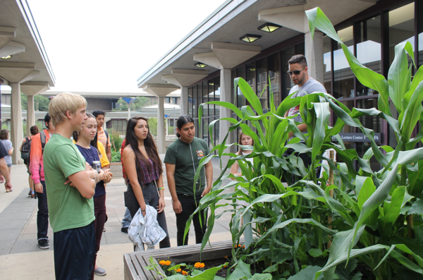Students stand near a Heritage Garden satellite bed listening to a speaker talk about the plants in the garden