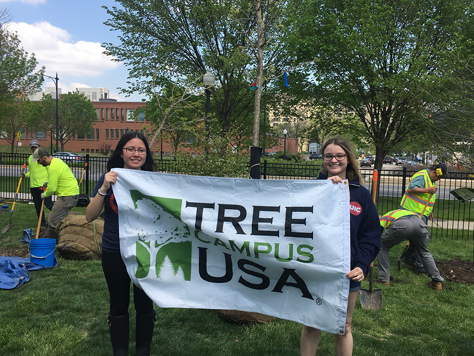 Interns hold up the Tree Campsu USA flag
