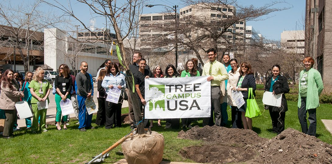 UIC staff and students hold up the Tree Campus USA banner during the College of Dentistry tree planting event