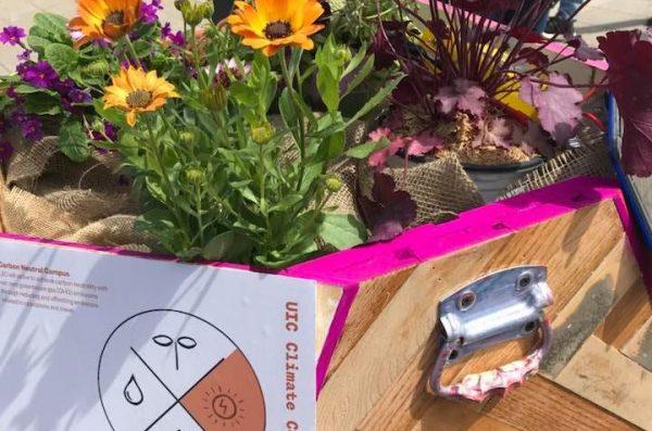 gardening installation featuring