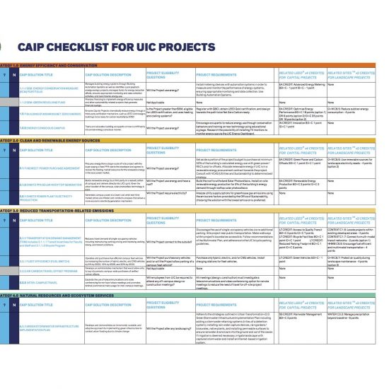 excel sheet of the CAIP Checklist for UIC Projects