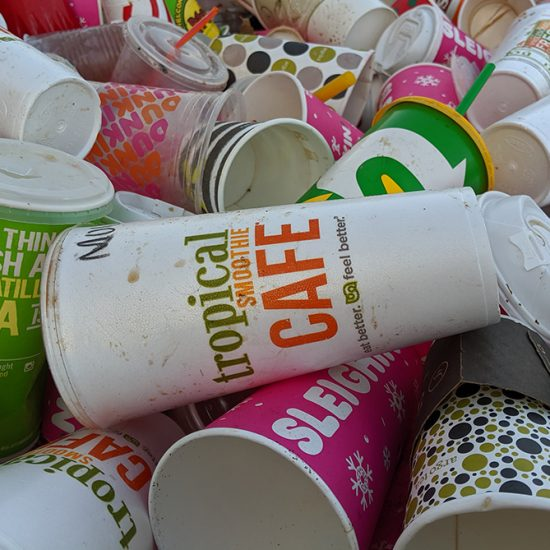 disposable beverages cups found in the 2019 UIC waste audit