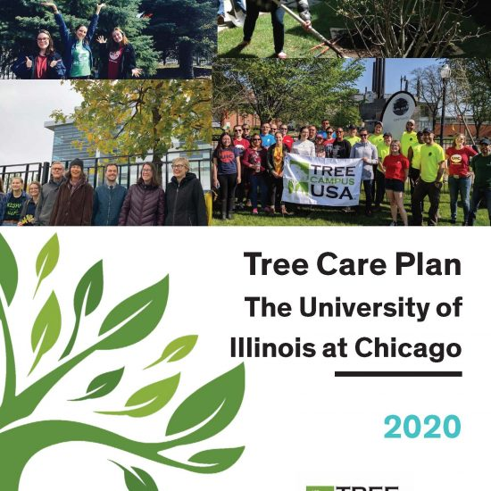 tree care plan. university of illinois at chicago. 2020