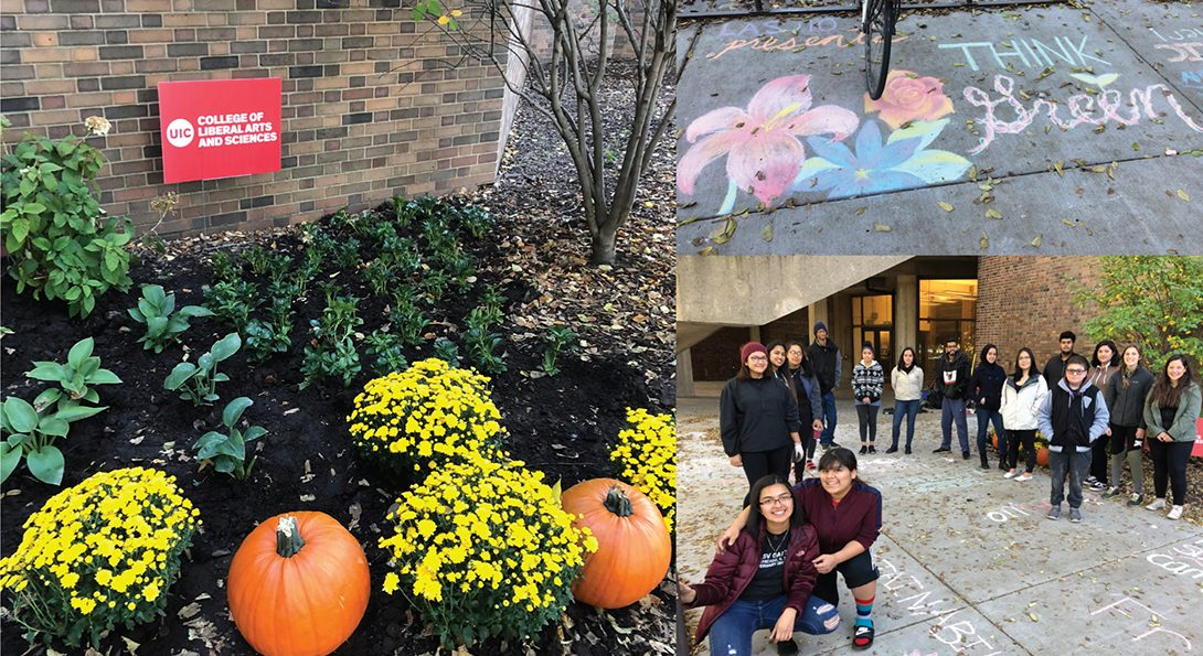 fall plants and sidewalk chalk decorate and enhance the aesthetics of BSB