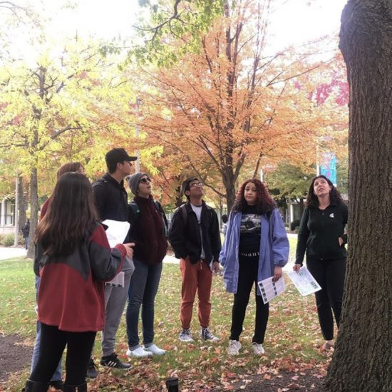 student explaining the benefit of one of UIC's oak tree to a group.