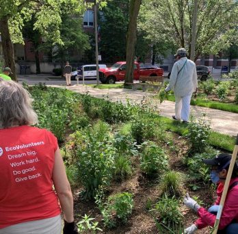 volunteers helps weed in the garden, with t-shirt reading